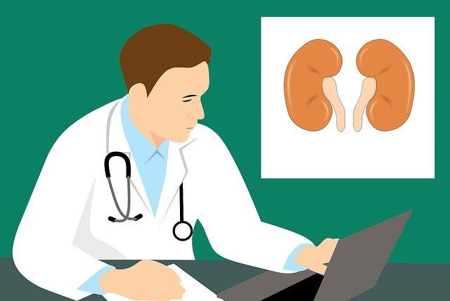 5 Pilihan Obat Herbal Batu Ginjal yang Aman