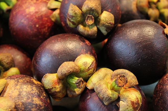 Mengenal Nama Latin Manggis Hingga Asal Usulnya